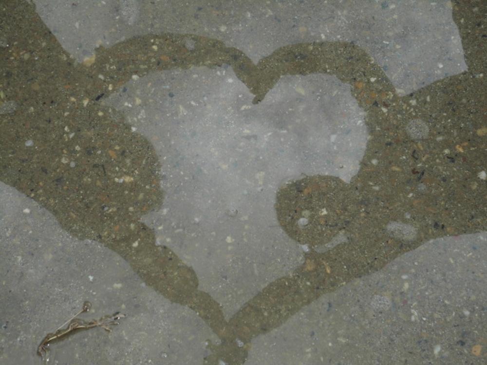 """15 後藤百音「水面にうつる二人の想い」Momone Goto """"The Heart in the Water Surface"""""""