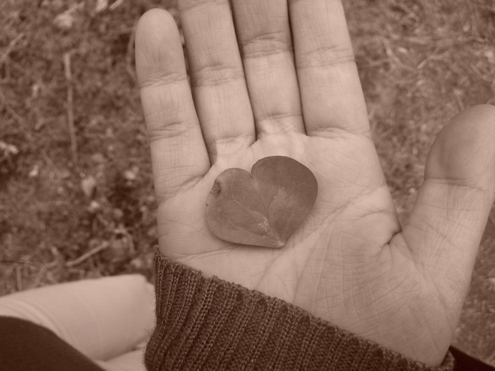 """36 吉江明日香「手のひらの愛」Asuka Yoshie """"The love on the palm"""""""