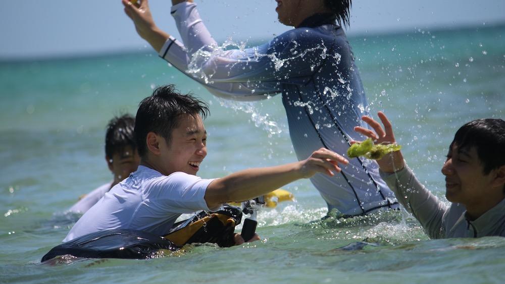 """Yusuke Harada """"Love and Fun in the Sun"""""""